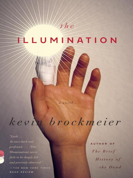 The Illumination A Novel