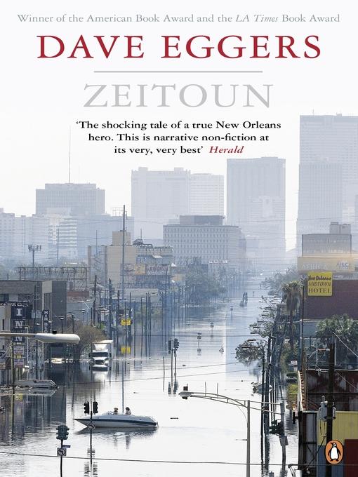 Zeitoun (eBook)
