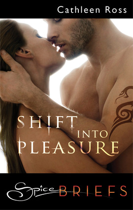 Shift Into Pleasure Cover