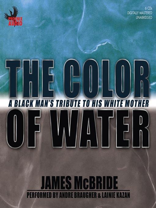a black mans journey essay