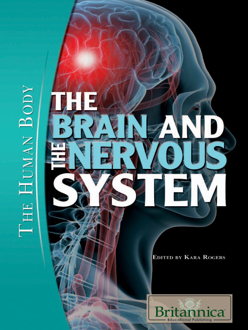 The Brain and the Nervous System (eBook)