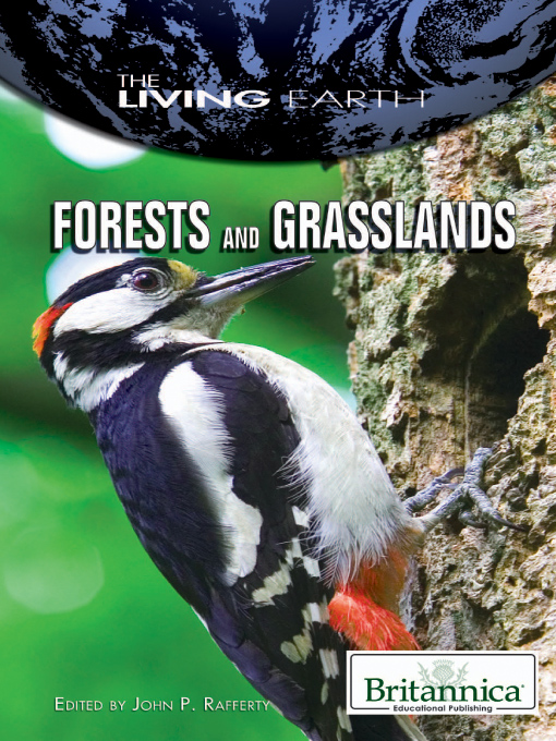 Forests and Grasslands - The Living Earth (eBook)