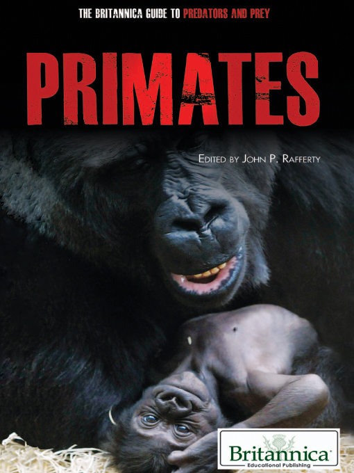 Primates (eBook)
