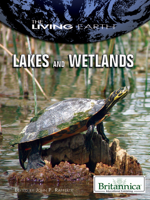 Lakes and Wetlands (eBook)