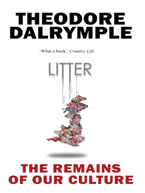 Litter (eBook): The Remains of Our Culture