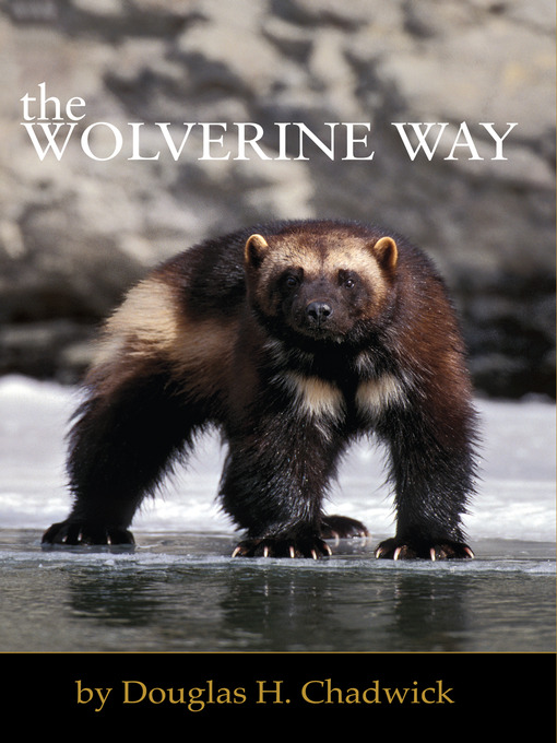 The Wolverine Way (eBook)