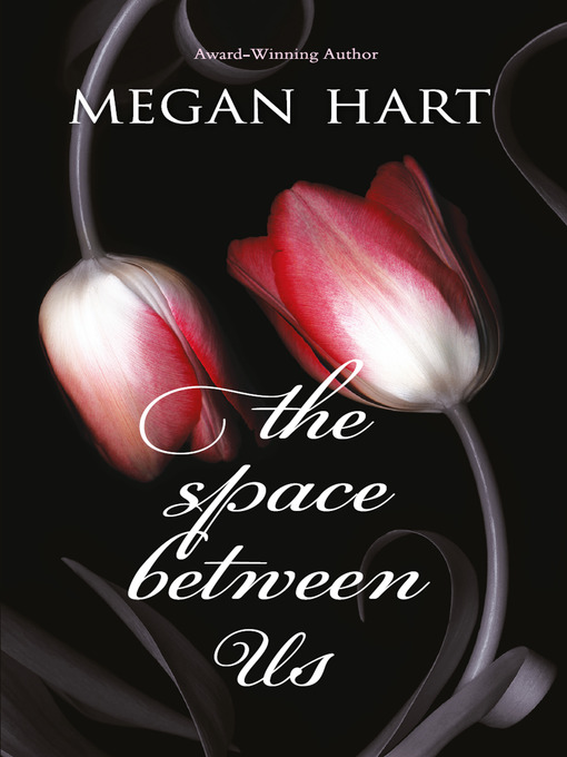 The Space Between Us (eBook)