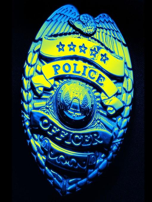 The Cop (eBook)