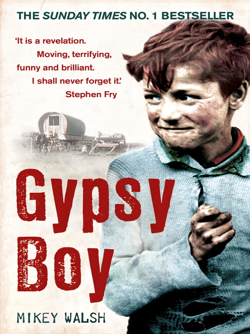 Gypsy Boy (eBook): One Boy's Struggle to Escape from a Secret World