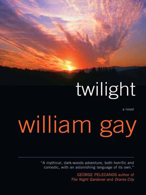 Twilight (eBook)