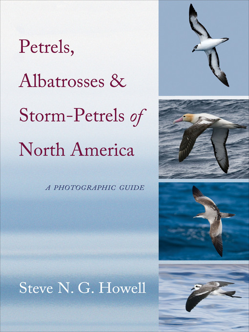Petrels, Albatrosses, and Storm-Petrels of North America (eBook): A Photographic Guide