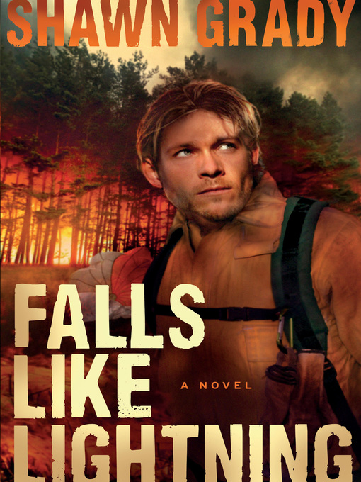 Cover image for Falls Like Lightning