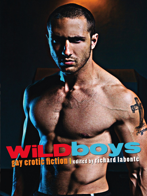 %7B7DE0D56E 14FE 41EE 847B 16AE4F5AC9BF%7DImg100 Beautiful Boys : Gay Erotic Stories