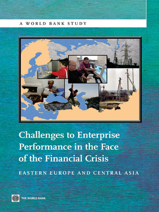 Challenges to Enterprise Performance in the Face of the Financial Crisis (eBook): Eastern Europe and Central Asia