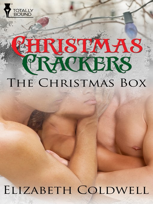 The Christmas Box (eBook)