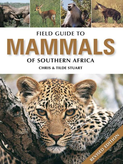 Field Guide to Mammals of Southern Africa (eBook)