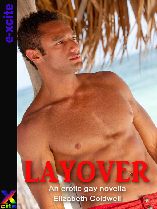 Layover: An erotic gay novella (eBook)