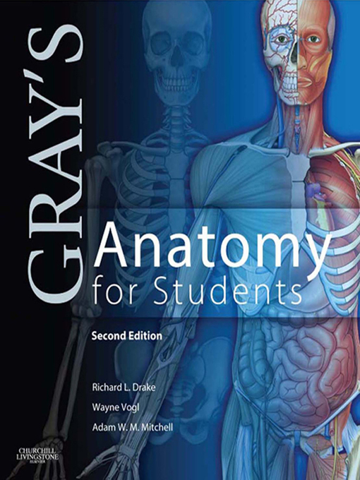 Grays Anatomy For Students Ebook 2010 Worldcat