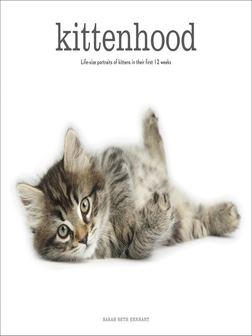 Kittenhood (eBook): Life-size Portraits of Kittens in Their First 12 Weeks