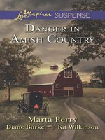 Danger in Amish Country: Fall from Grace\Dangerous Homecoming\Return to Willow Trace