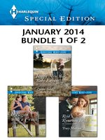 Harlequin Special Edition January 2014 - Bundle 1 of 2: Happy New Year, Baby Fortune!\It Began with a Crush\Reid's Runaway Bride