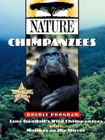 Chimpanzees, Part 1 of 2
