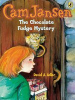 The Chocolate Fudge Mystery