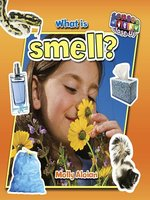 What is smell?