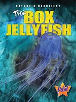 The Box Jellyfish