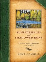 Sunlit Riffles and Shadowed Runs