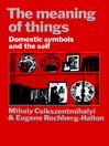 The Meaning of Things (eBook)