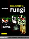 Introduction to Fungi (eBook)