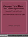 Quantum Field Theory in Curved Spacetime (eBook): Quantized Fields and Gravity