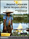 Beyond Corporate Social Responsibility (eBook): Oil Multinationals and Social Challenges