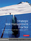 Strategic Risk Management Practice (eBook): How to Deal Effectively with Major Corporate Exposures