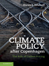 Climate Policy after Copenhagen (eBook): The Role of Carbon Pricing