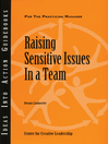 Raising Sensitive Issues in a Team (eBook)