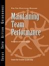 Maintaining Team Performance (eBook)