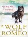 A Wolf Called Romeo (eBook)