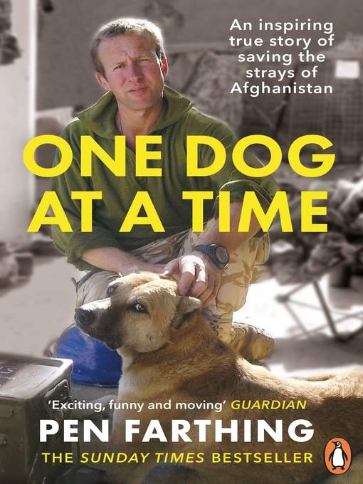 One Dog at a Time (eBook): Saving the Strays of Helmand--An Inspiring True Story