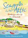 Seagulls in the Attic (eBook)