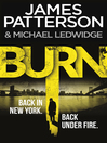 Burn (eBook): Michael Bennett Series, Book 7