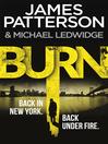 Burn (eBook): Michael Bennett Series, Book 7