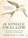 A Single Swallow (eBook): Following An Epic Journey From South Africa To South Wales