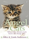 Angel Cats (eBook): When feline friends touch hearts and change lives