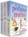 Fiona Gibson 3 Book Bundle (eBook)