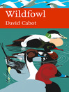 Wildfowl (eBook): Collins New Naturalist Library Series, Book 110