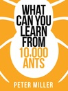 What You Can Learn From 10,000 Ants (Collins Shorts, Book 4) (eBook)