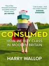 Consumed (eBook): How We Buy Class in Modern Britain