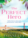 The Perfect Hero (eBook)